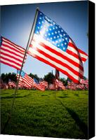 American Flag Canvas Prints - Old Glory Canvas Print by Mike Hill