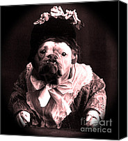Puppy Canvas Prints - Old Lady English Bulldog Canvas Print by Tisha McGee