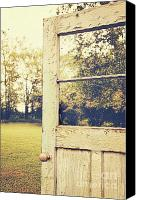 Heavy Texture Canvas Prints - Old peeling door with landscape Canvas Print by Sandra Cunningham
