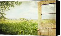 Heavy Texture Canvas Prints - Old peeling door with rural  landscape  Canvas Print by Sandra Cunningham