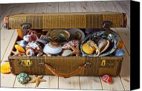 Traveling Canvas Prints - Old suitcase full of sea shells Canvas Print by Garry Gay