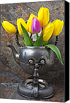 Stone Wall Canvas Prints - Old tea pot and tulips Canvas Print by Garry Gay