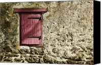 Door Canvas Prints - Old Wall and Door Canvas Print by Olivier Le Queinec