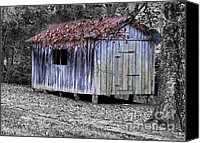 Selective Color Canvas Prints - Old Weathered Shed Canvas Print by Betty LaRue