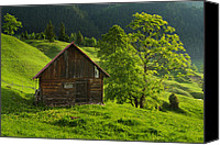 Rural Scenes Canvas Prints - Old wood house up in the mountains Canvas Print by Toma Bonciu