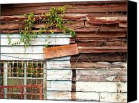 Dilapidated House Canvas Prints - Old Wooden Shack Canvas Print by Yali Shi