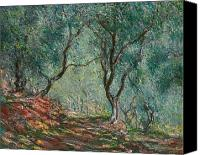 Bordighera; Italian; Landscape; Olive Grove; Path; Impressionist; French Canvas Prints - Olive Trees in the Moreno Garden Canvas Print by Claude Monet