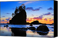 Olympic National Park Canvas Prints - Olympic Sunset Canvas Print by Inge Johnsson