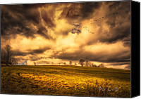 Geese Canvas Prints - Once Last Spring Canvas Print by Bob Orsillo