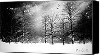 Black And White Canvas Prints - One Night In November Canvas Print by Bob Orsillo