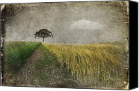 Rural Scenes Mixed Media Canvas Prints - One Tree Canvas Print by Svetlana Sewell