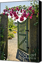 Concrete Canvas Prints - Open garden gate with roses Canvas Print by Elena Elisseeva