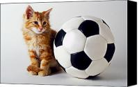 Ball Canvas Prints - Orange and white kitten with soccor ball Canvas Print by Garry Gay