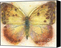 Spice Painting Canvas Prints - orange-barred Sulphur Butterfly Canvas Print by Pam Ek