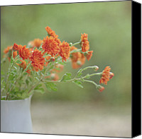 Orange Flower Photo Canvas Prints - Orange Flower Canvas Print by Pamela N. Martin