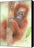 Orangutan Painting Canvas Prints - Orangutan Baby Monkey Canvas Print by Pamela Morris