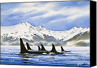 Whale Painting Canvas Prints - Orca Canvas Print by James Williamson