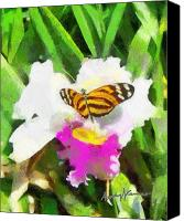 Fushia Canvas Prints - Orchid and Butterfly Canvas Print by Anthony Caruso