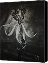 Estephy Sabin Figueroa Drawings Canvas Prints - Orchid in Black-and-White Canvas Print by Estephy Sabin Figueroa