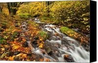 Wahkeena Creek Canvas Prints - Oregon Autumn Beauty Canvas Print by Mike  Dawson