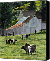 Cow Barn Canvas Prints - Oreo Cows in Napa Canvas Print by Gail Chandler