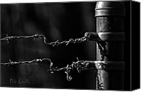 Fence Canvas Prints - Other side of the fence Canvas Print by Bob Orsillo