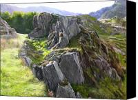 Naturalistic Canvas Prints - Outcrop in Snowdonia Canvas Print by Harry Robertson