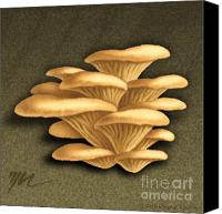 Mushroom Drawings Canvas Prints - Oyster Mushrooms Canvas Print by Marshall Robinson