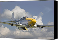 P51 Mustang Canvas Prints - P51 Ferocious Frankie Canvas Print by Pat Speirs