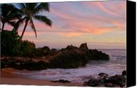 Hawaii Beach Art Canvas Prints - Paa ka waha O Paako Canvas Print by Sharon Mau