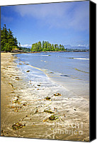 Forest Canvas Prints - Pacific ocean coast on Vancouver Island Canvas Print by Elena Elisseeva