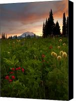 Mt. Rainier Canvas Prints - Paintbrush Sunset Canvas Print by Mike  Dawson