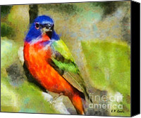 Bunting Painting Canvas Prints - Painted Bunting Canvas Print by Elizabeth Coats