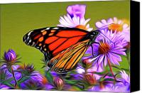 Award Digital Art Canvas Prints - Painted Butterfly Canvas Print by David Kehrli