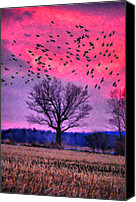 Country Scenes Canvas Prints - Painted Flight Canvas Print by Emily Stauring
