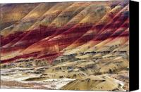 Clay Canvas Prints - Painted Hills Contour Canvas Print by Mike  Dawson