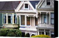 Painted Ladies Canvas Prints - Painted Ladies Canvas Print by Doug Sturgess