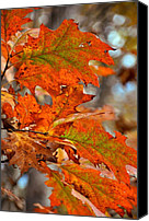 Gold Leave Canvas Prints - Painted Leaves Canvas Print by JAMART Photography