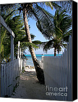 Fences Canvas Prints - Palm Alley Canvas Print by Karen Wiles