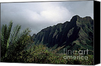 Oahu Digital Art Canvas Prints - Palm and Koolau Mountains Canvas Print by Thomas R Fletcher