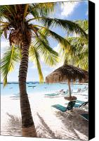 Beach Chairs Canvas Prints - Palm Trees and Palapa Canvas Print by George Oze