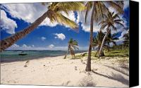 Grand Cayman Canvas Prints - Palm Trees At Breaker Point Grand Cayman Island Canvas Print by George Oze