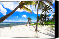 Grand Cayman Canvas Prints - Palm Trees on Breakers Beach Canvas Print by George Oze