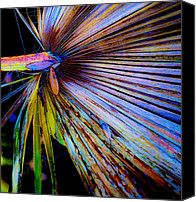 Vivid Colors Canvas Prints - Palmetto Gone Wild Canvas Print by Stephen Anderson