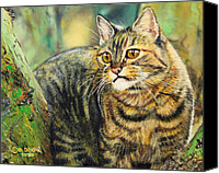 Photorealism Canvas Prints - Palo Verde Kitty Canvas Print by Baron Dixon