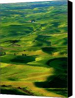 Rolling Hills Canvas Prints - Palouse Morning Canvas Print by Mike  Dawson