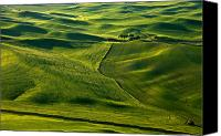 Rolling Hills Canvas Prints - Palouse Patterns Canvas Print by Mike  Dawson
