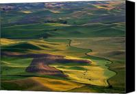 Farm Canvas Prints - Palouse Shadows Canvas Print by Mike  Dawson