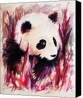 Legend Canvas Prints - Panda Canvas Print by Rachel Christine Nowicki