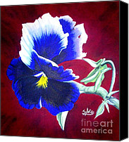 Greeting Cards Tapestries - Textiles Canvas Prints - Pansy Canvas Print by Sylvie Heasman